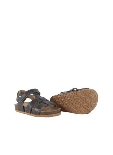 Kids A More Holley Tek Cırtlı Deri Erkek Çocuk Sandalet  Füme